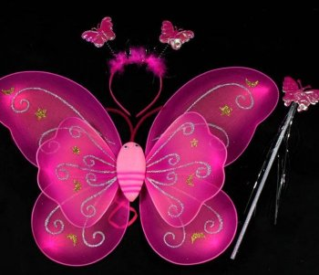 Butterfly Wing Set-0