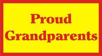Proud Grandparents Photo Prop-0