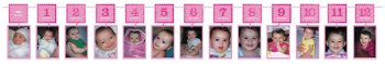 1st Birthday Girl Photo Garland Banner - Over 12FT-0