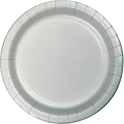 Shimmering Silver Paper Plates - 24PC-0