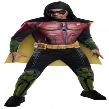 Muscle Chest Adult Robin Costume-0