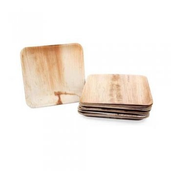 "9.5"" Square Biodegradable Plates - 10PC-0"