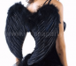 Black Feather Wings XL-0